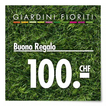 Buono Regalo CHF 100